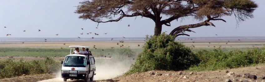 Un regard sur les activités à faire durant un séjour au Kenya