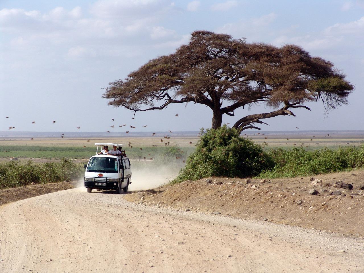 Séjour au Kenya : un moment de rêve