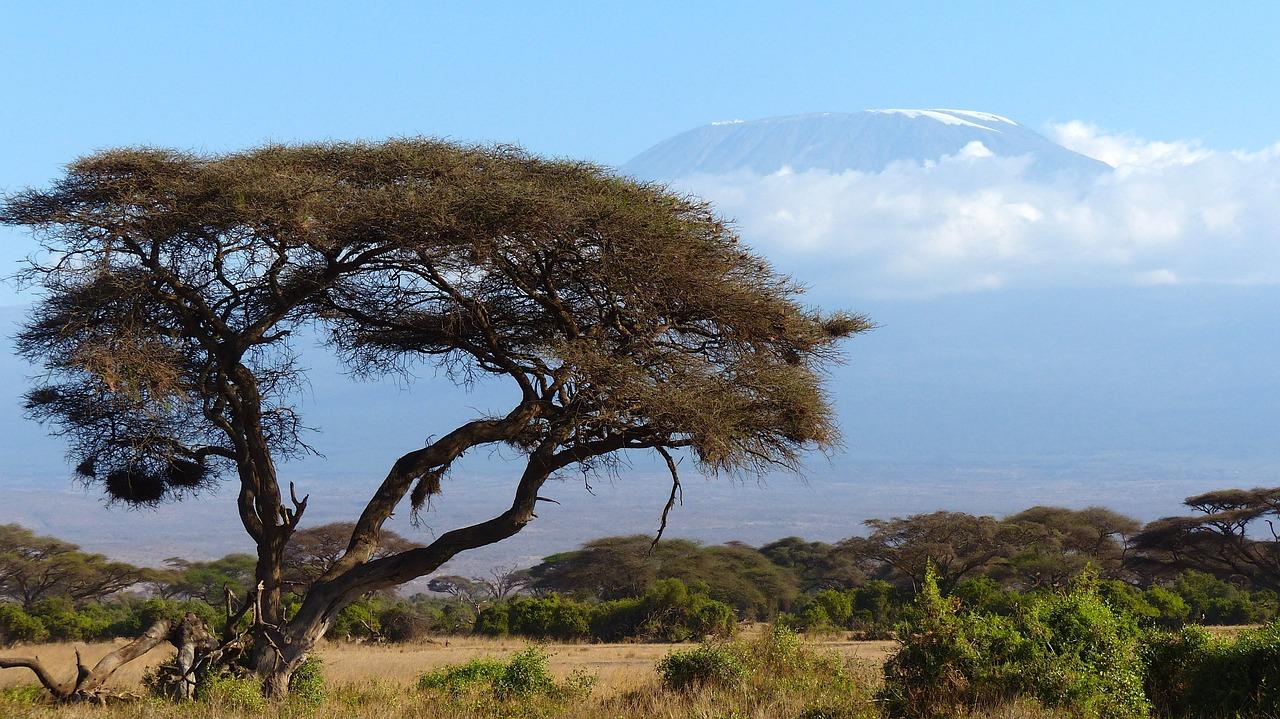 Séjour au Kenya : à faire absolument